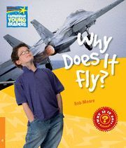 WHY DOES IT FLY ?