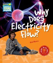WHY DOES ELECTRICITY FLOW ?