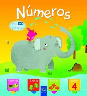 NUMEROS CON 100 SOLAPAS