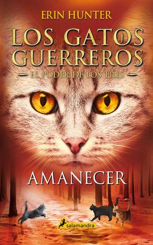 LOS GATOS GUERREROS 6.  AMANECER