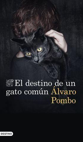 EL DESTINO DE UN GATO COMÚN.