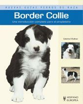 BORDER COLLIE GUIAS DE PERROS