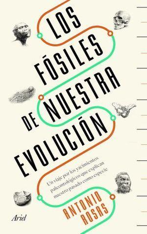 LOS FOSILES DE NUESTRA EVOLUCION