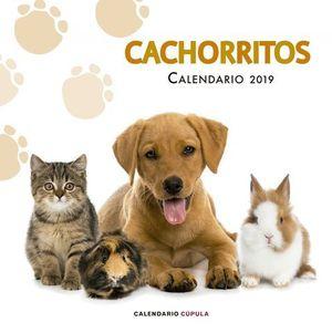 CALENDARIO CACHORRITOS 2019