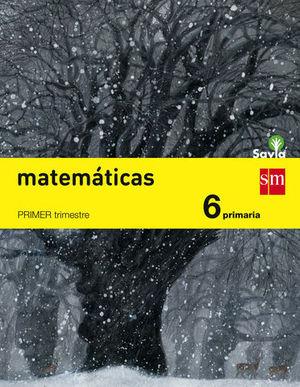 MATEMATICAS 6º EP SAVIA ED. 2015