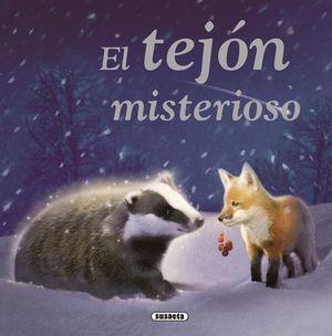 EL TEJON MISTERIOSO
