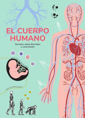 EL CUERPO HUMANO  ( VV KIDS )