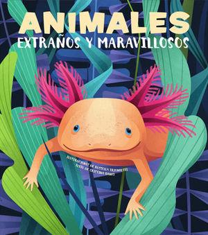 ANIMALES EXTRAÑOS Y MARAVILLOSOS (VVKIDS).