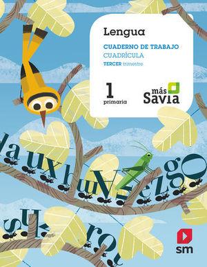 CUADERNO LENGUA 1º EP CUADRICULA 3º TRIMESTRE MAS SAVIA ED. 2018