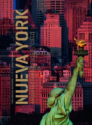 NUEVA YORK ARQUITECTURA DESDE EL CIELO