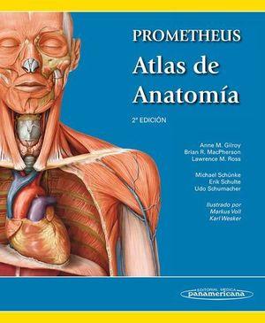 PROMETHEUS ATLAS DE ANATOMIA 2ª EDICION
