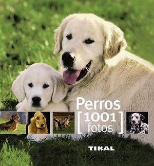 PERROS 1001 FOTOS